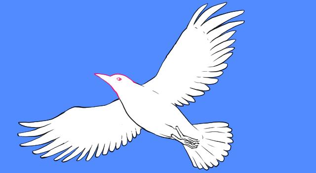 鳥のアタリをパーツ別にとる