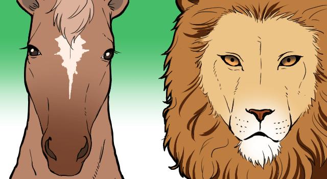 草食動物と肉食動物の目の位置は違う