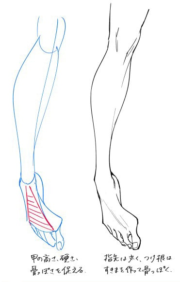 足の描き方03