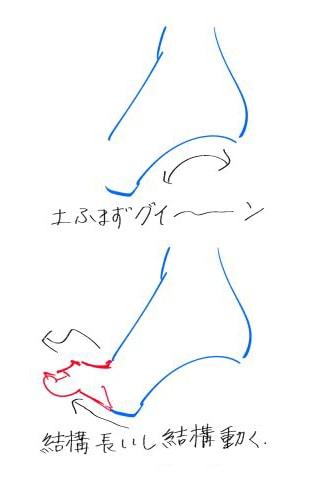 側面から見た足の描き方01