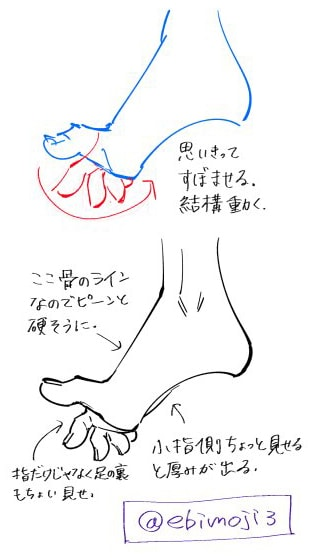 側面から見た足の描き方02