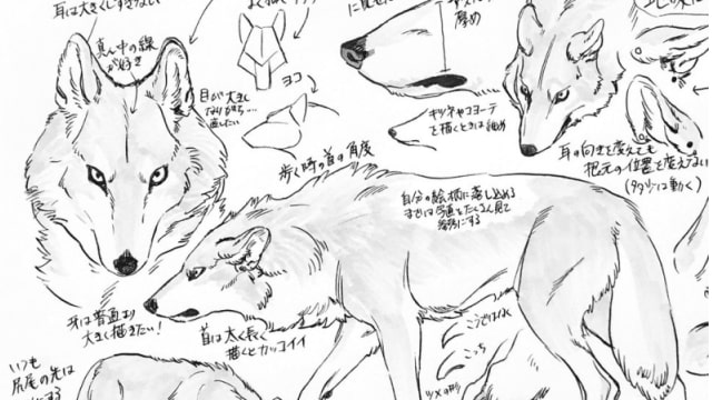 狼の描き方のポイント。涼森流をイラストから学ぼう!