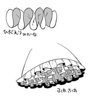 個人的なフリルの描き方6