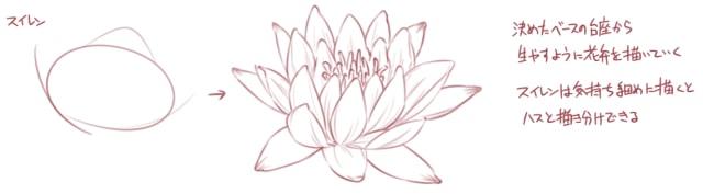 イラストから学ぶ梅菊桜花の描き方お絵かき図鑑