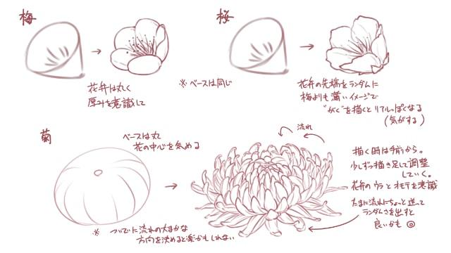 イラストから学ぶ!梅、菊、桜…花の描き方