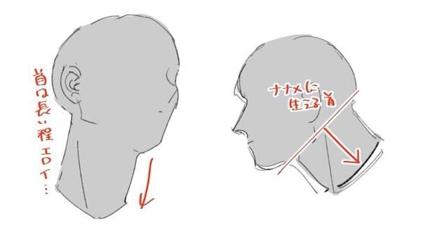 マッチョの首と体の描き方1