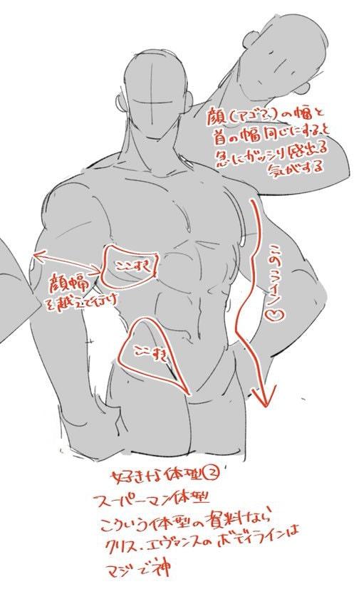 マッチョの首と体の描き方3
