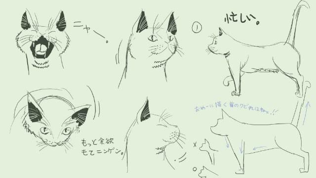 猫のイラストを簡単に描く方法!顔や体のポイントを学ぼう