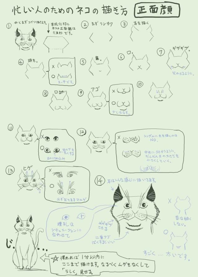 猫のイラストを簡単に描く方法!顔や体のポイントを学ぼう|お