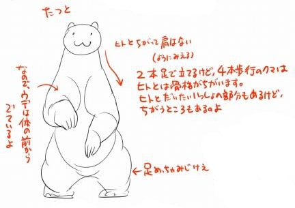 熊の描き方2