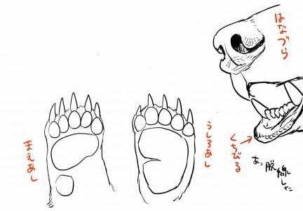 熊の描き方3