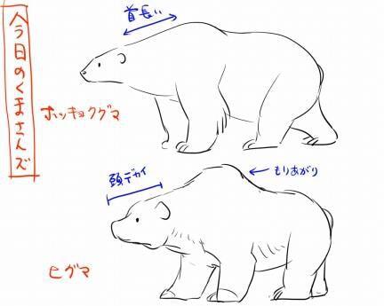 熊の描き方4