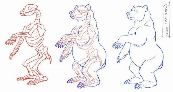 熊の描き方6