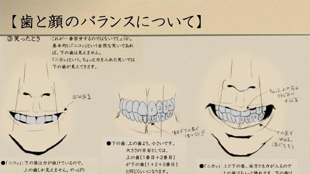 歯の描き方をイラスト解説歯と顔のバランスについてお絵かき図鑑