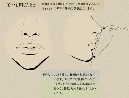 歯と顔のバランスについて3