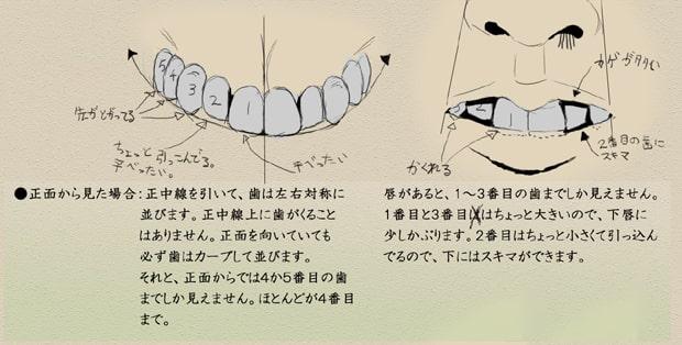 歯と顔のバランスについて6