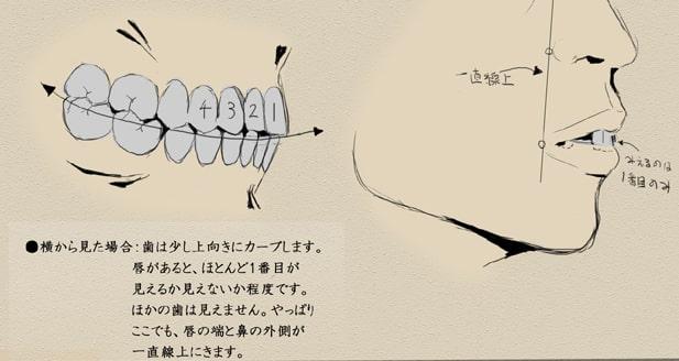 歯と顔のバランスについて7