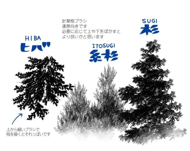 針葉樹ブラシ1