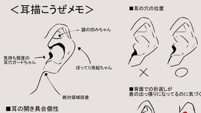 耳の描き方をイラスト解説正面横後ろ様々な角度からの作画