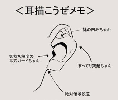 耳の描き方1