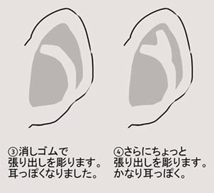 耳の描き方8