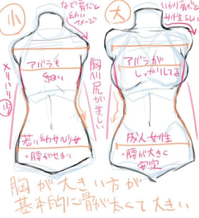 胸の描き方4