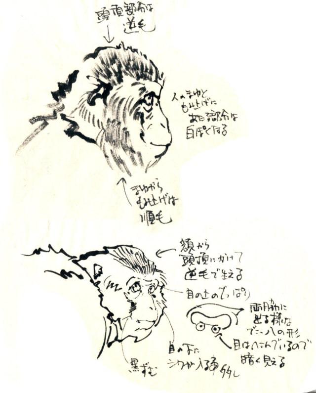 猿の描き方2