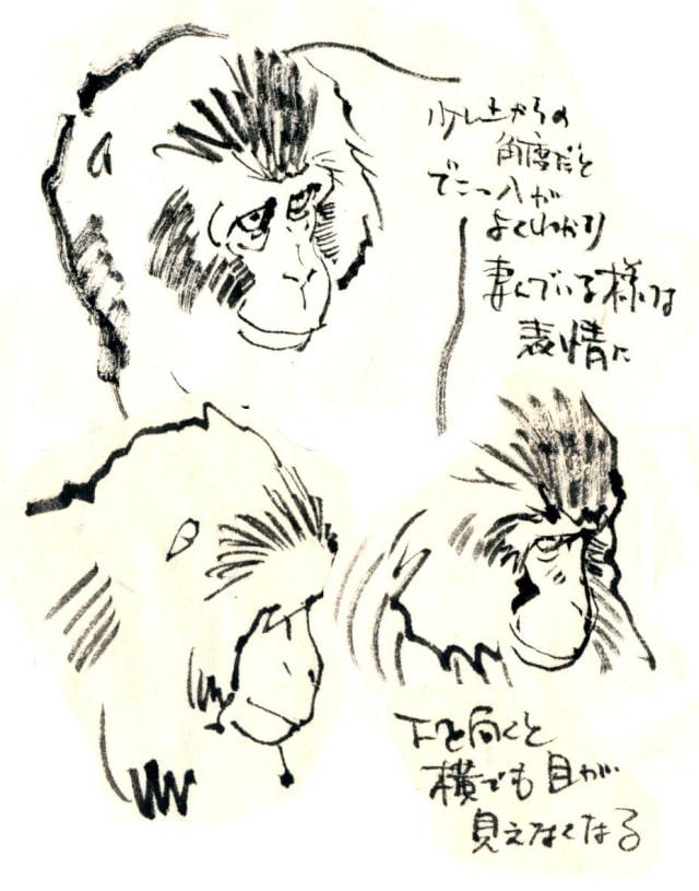 猿の描き方3
