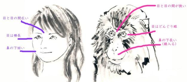 猿の描き方1-1