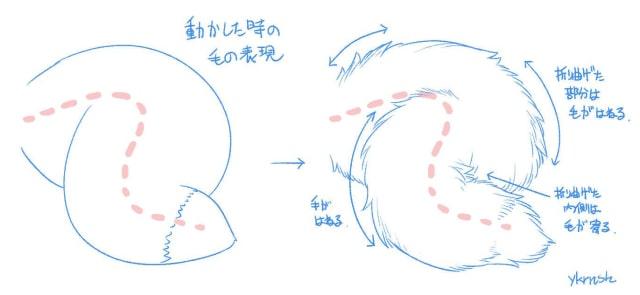 狐の尻尾の描き方3