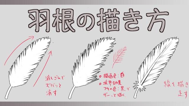 羽根の簡単な描き方をイラストでご紹介羽毛フェザー装飾品の絵の