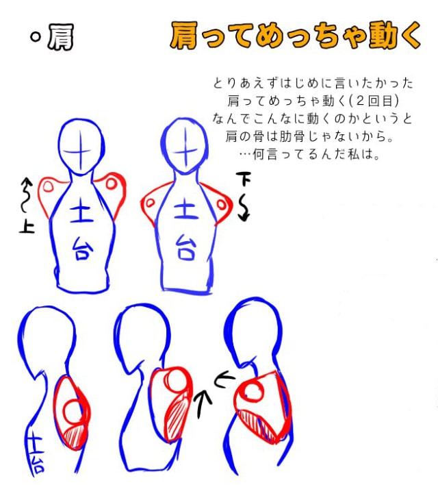 肩と腕の描き方、遠近感の出し方1