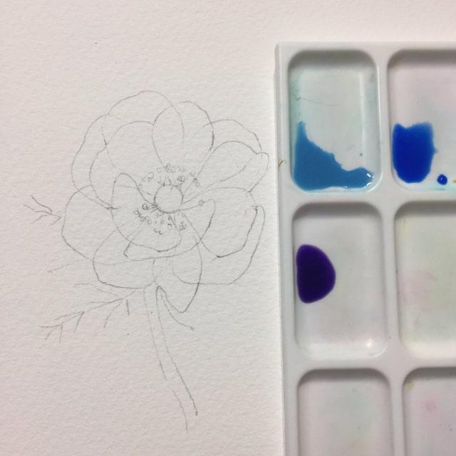 花の水彩画イラストメイキング6