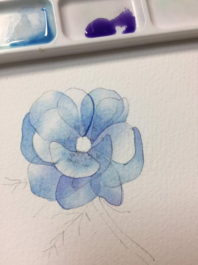 花の水彩画イラストメイキング11