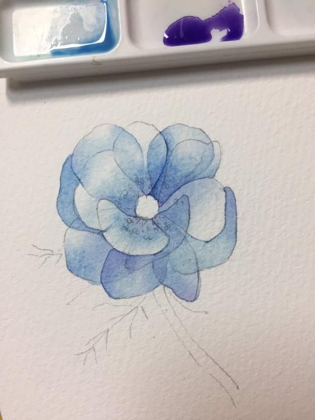 花の水彩画イラストメイキング12
