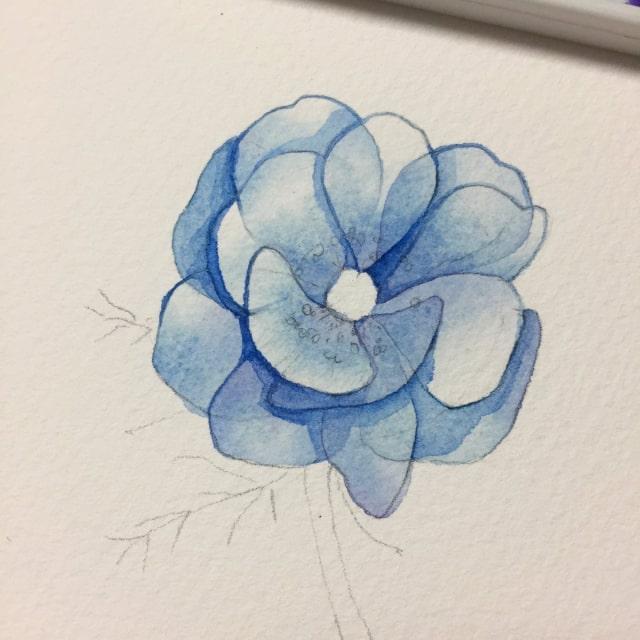 花の水彩画イラストメイキング13