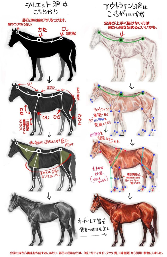 馬の描き方11