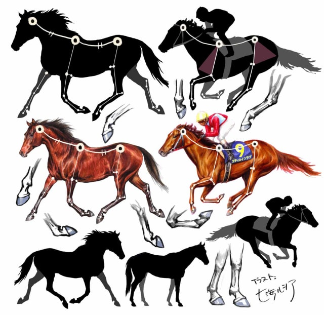 馬の描き方12