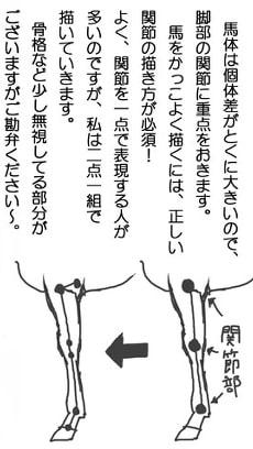 馬の描き方4-1