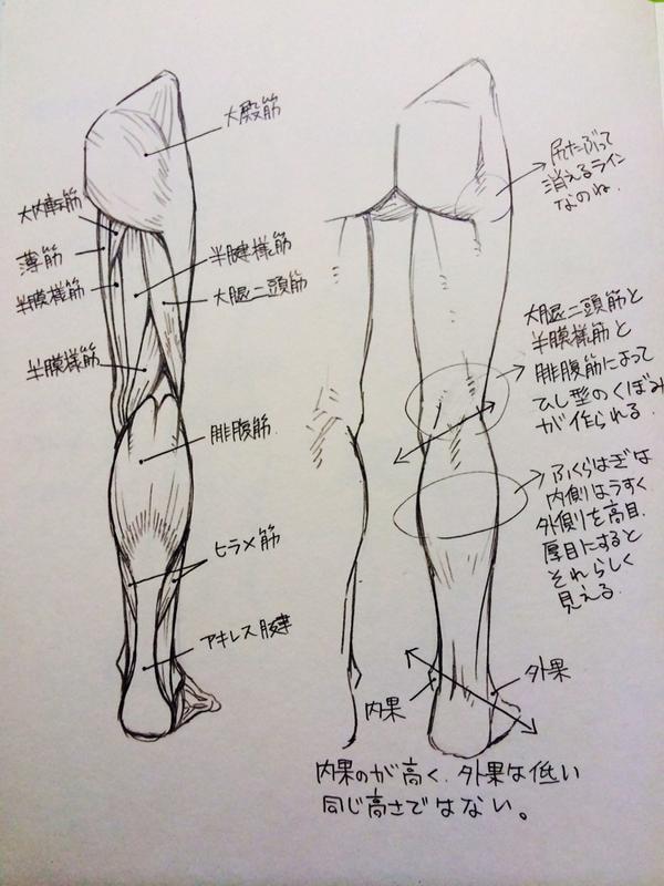 脚・ひざ・ももの描き方3