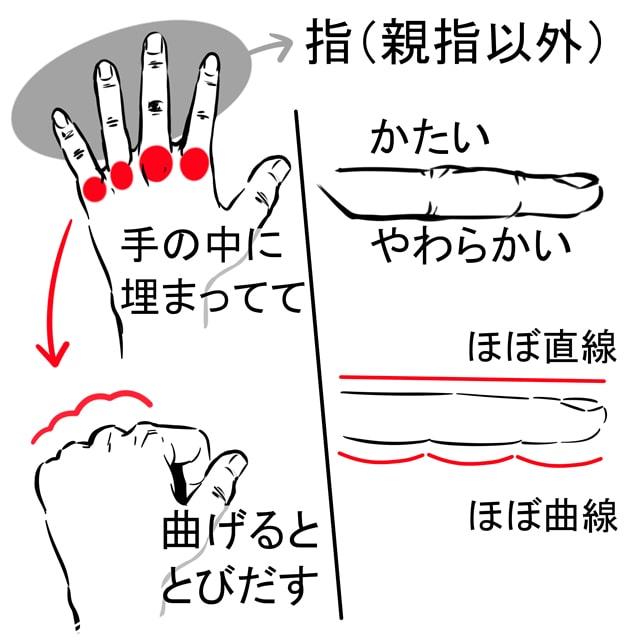 指・爪の描き方3