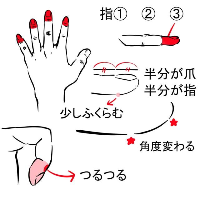 指・爪の描き方5
