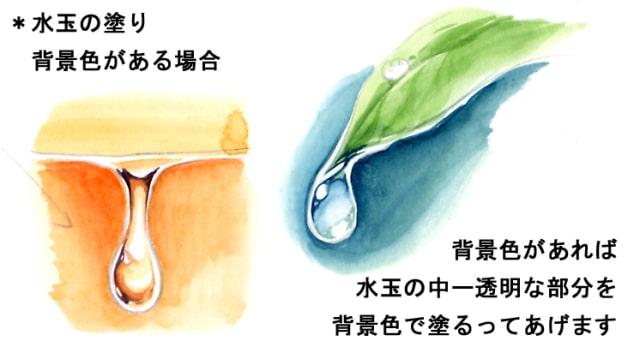 水彩画で水ニンジン11