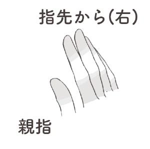クリスタの指ブラシ4