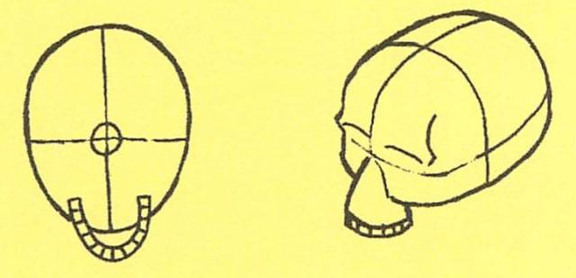 骸骨の描き方5