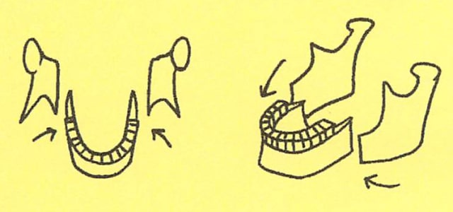 骸骨の描き方17