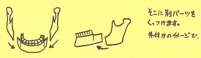 骸骨の描き方18