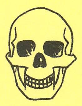 骸骨の描き方22
