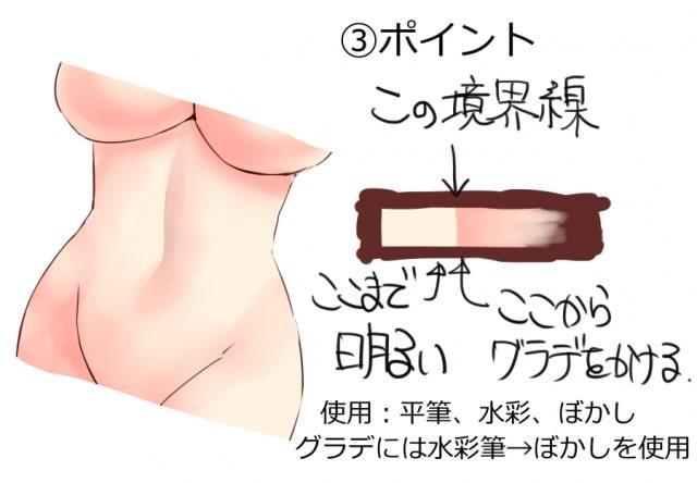 女性の腹筋の描き方3