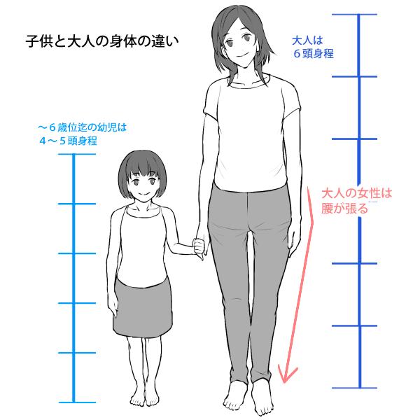 子供と大人の体格の違い